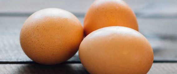 How Egg Industry Greed Caused The Salmonella Outbreak
